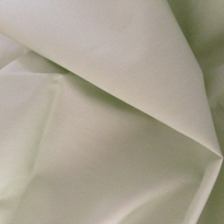 Pale Green Examination Bed Modesty Sheet | WinC