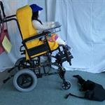 Wheelchair Positioning Service